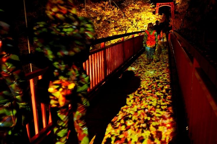 Le pont Futami illuminé